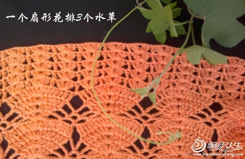 排水草花.jpg
