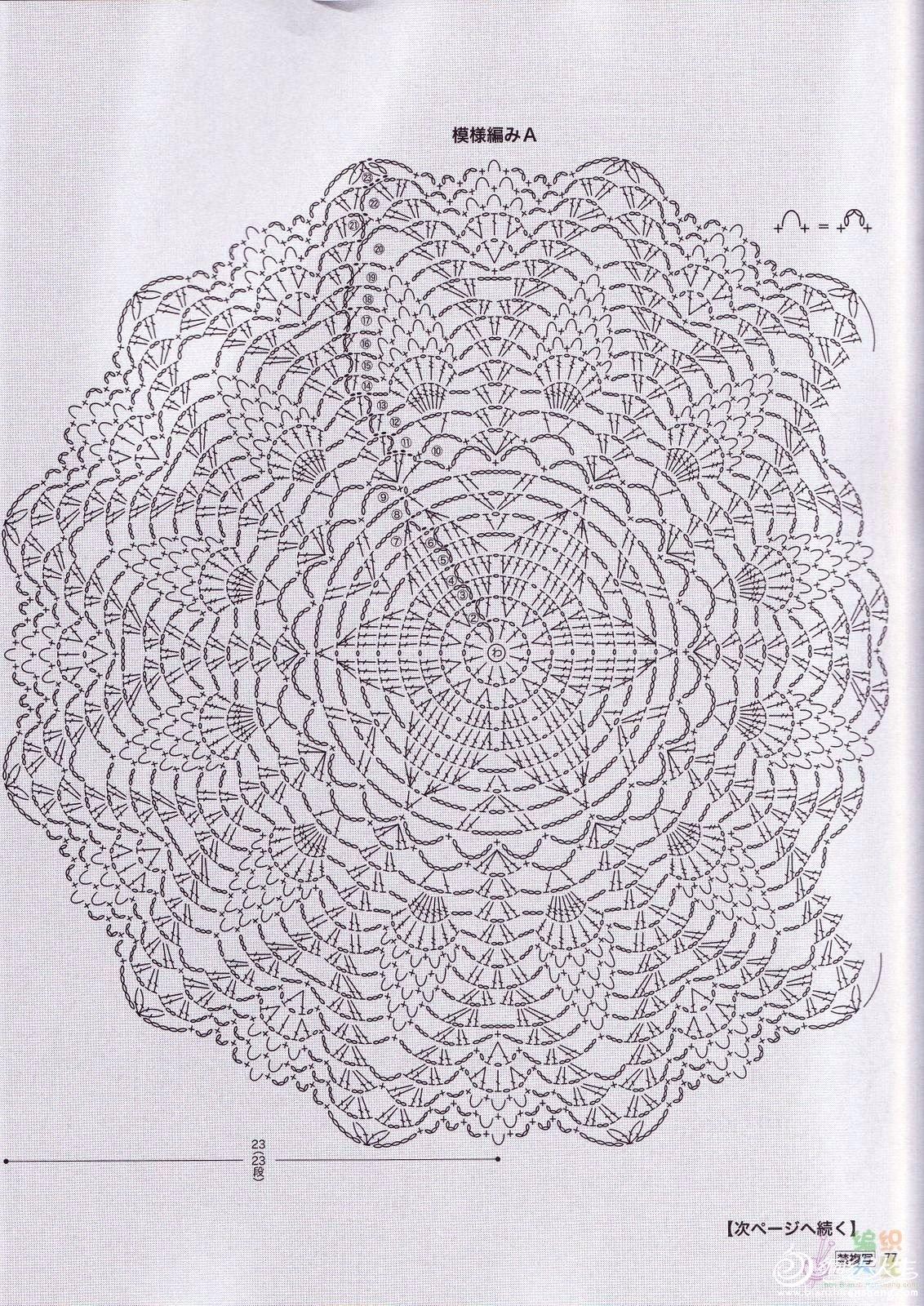 R菠萝2.jpg
