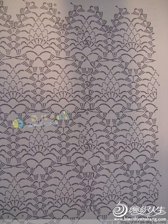 玉藕图解5.jpg