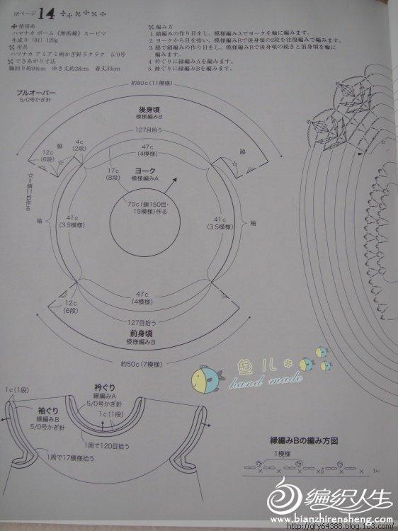 雏菊图解2.jpg