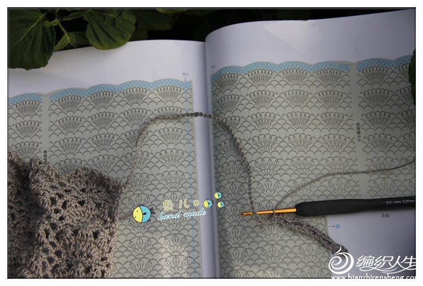 海贝壳9.jpg