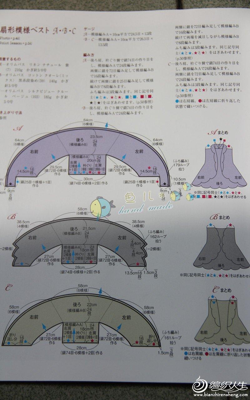 海贝壳图解2.jpg