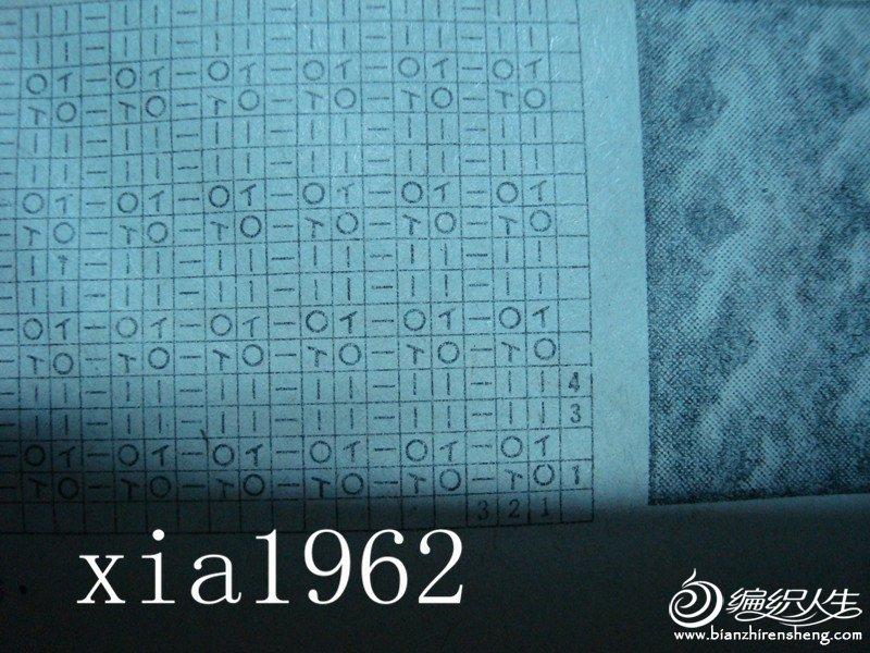 DSC02247_副本.jpg