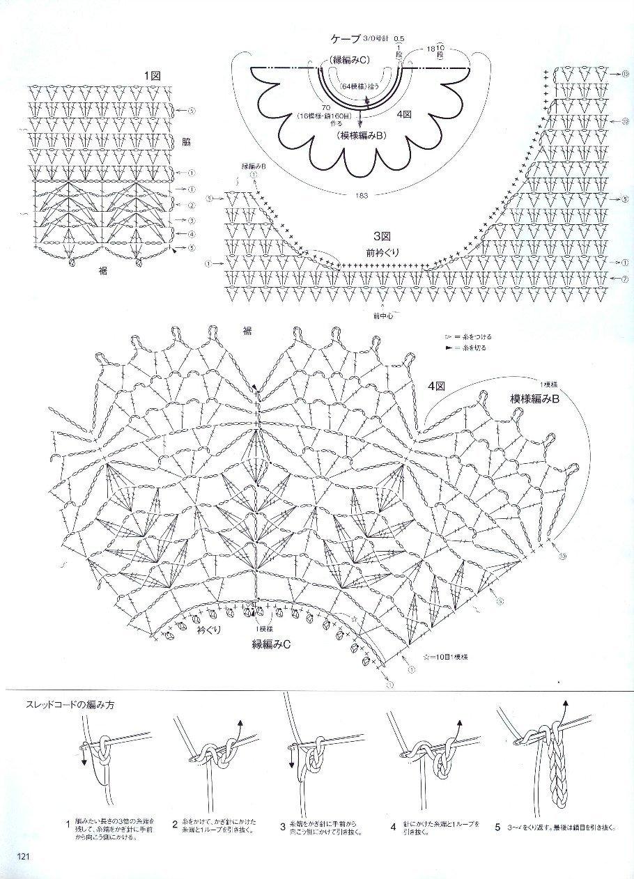 雏菊-12图解.jpg