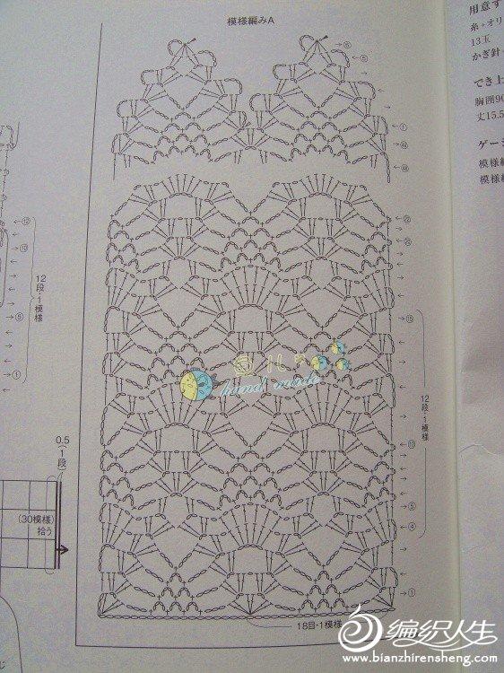 黛痕图解3.jpg