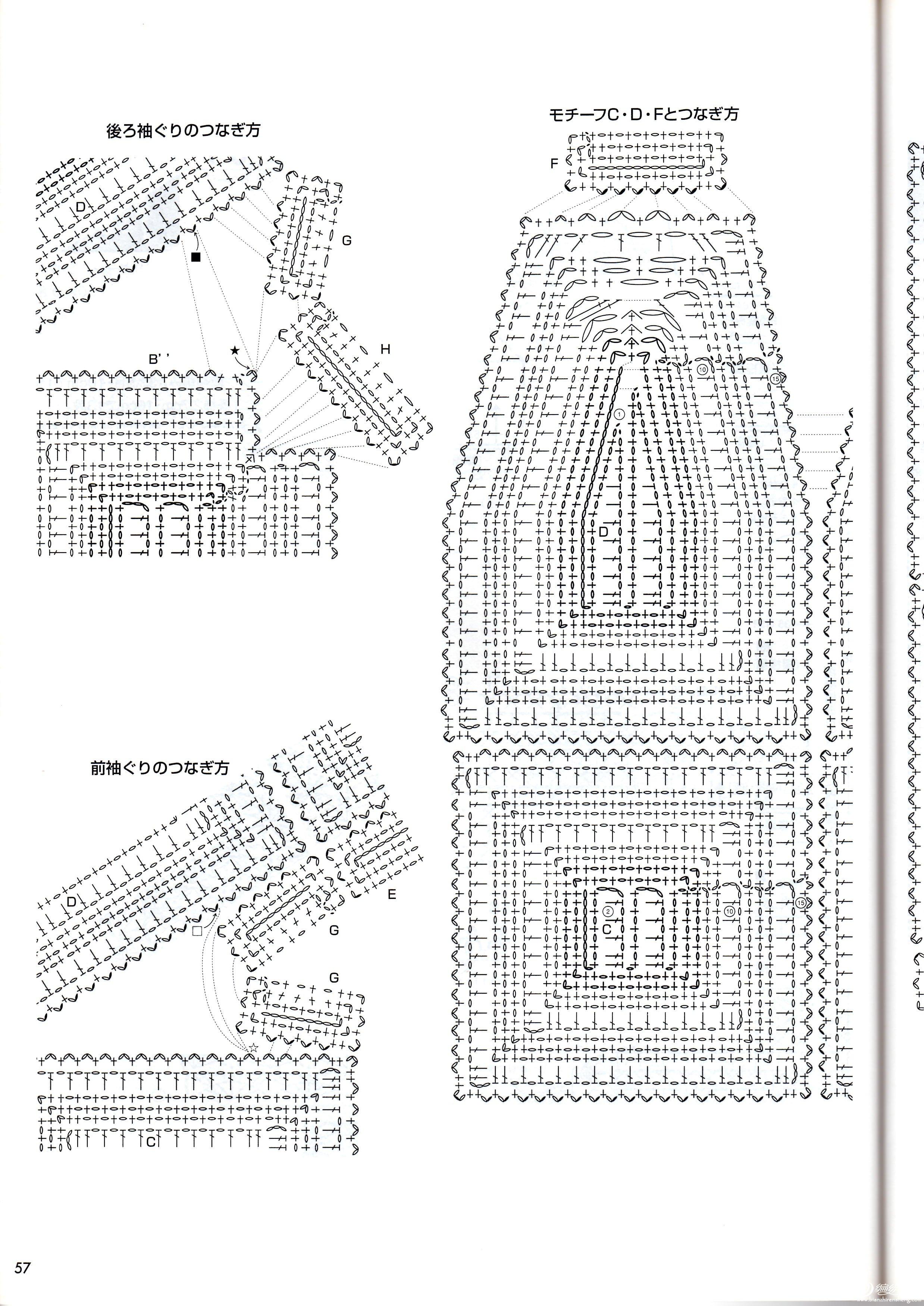 美女美衣 (3).jpg