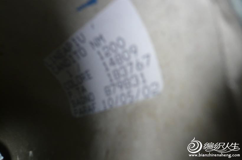 P1090169.JPG