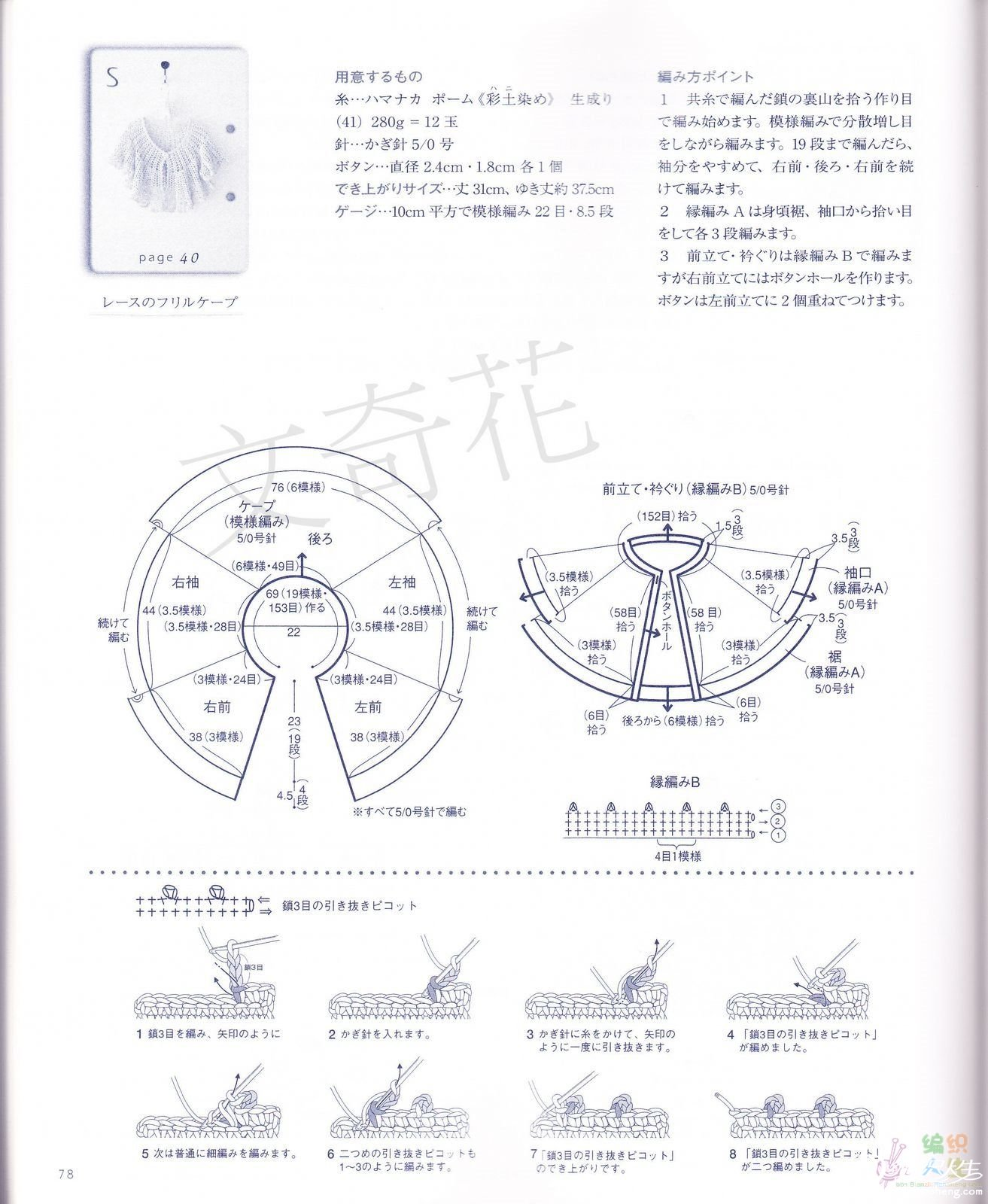白桦林图解1.jpg