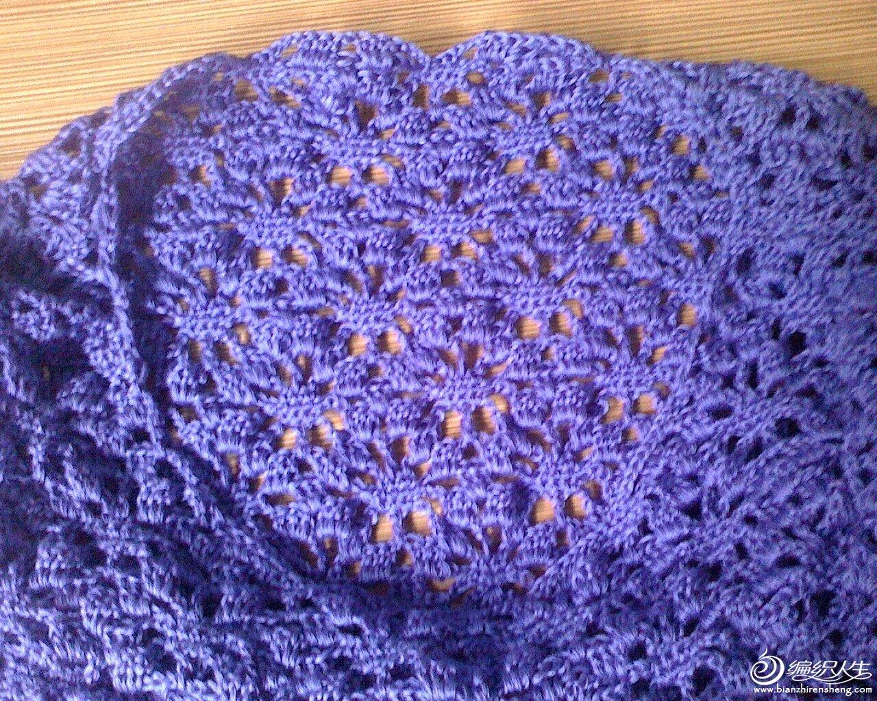 紫色衣衣2.JPG