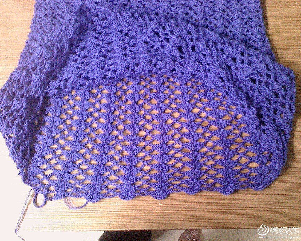 紫色衣衣3.JPG