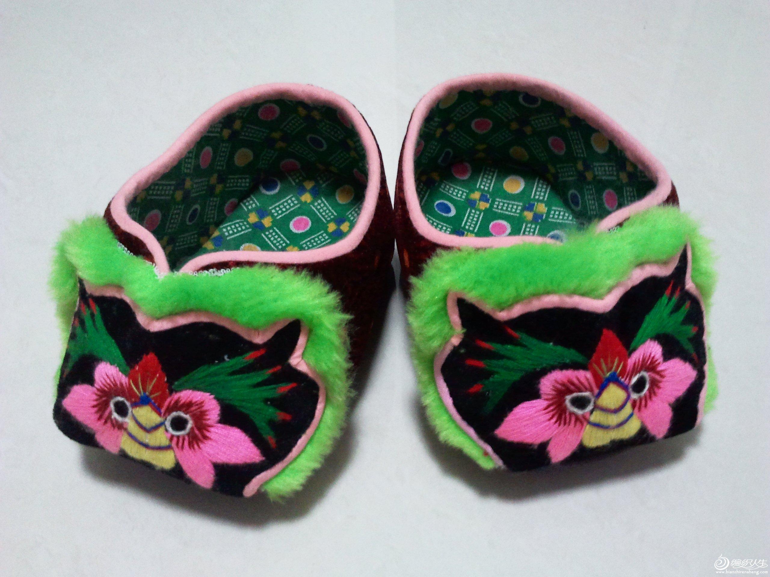 猫头鞋(1).jpg