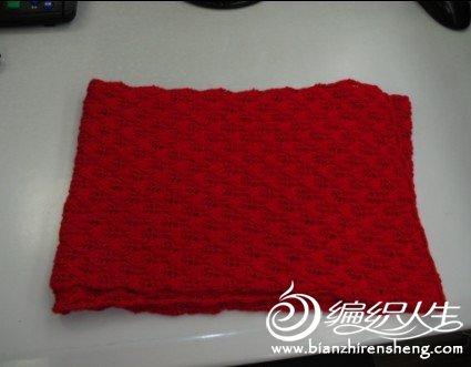红叶子.jpg