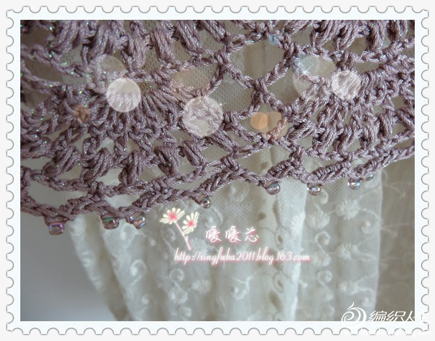 紫罗兰3.jpg