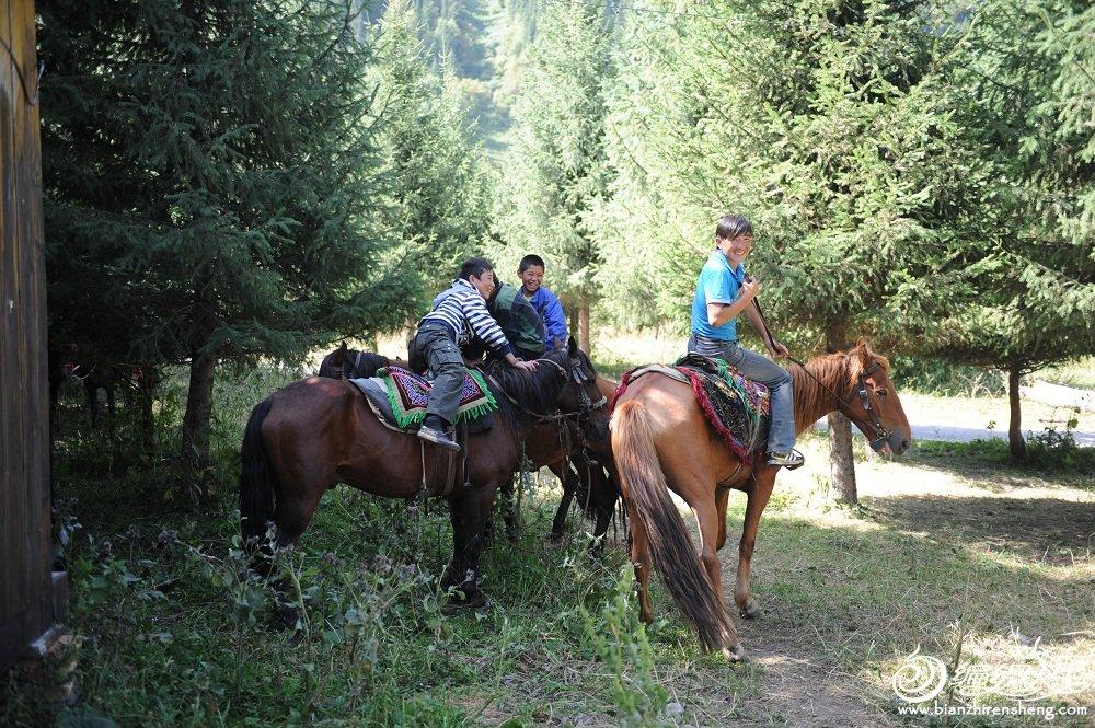 8,哈萨克是马背上的民族,小孩子都是骑马高手,在树林中低头附身行动轻巧。.jpg