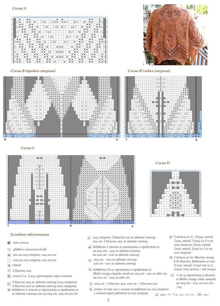 绽放原图解3.jpg