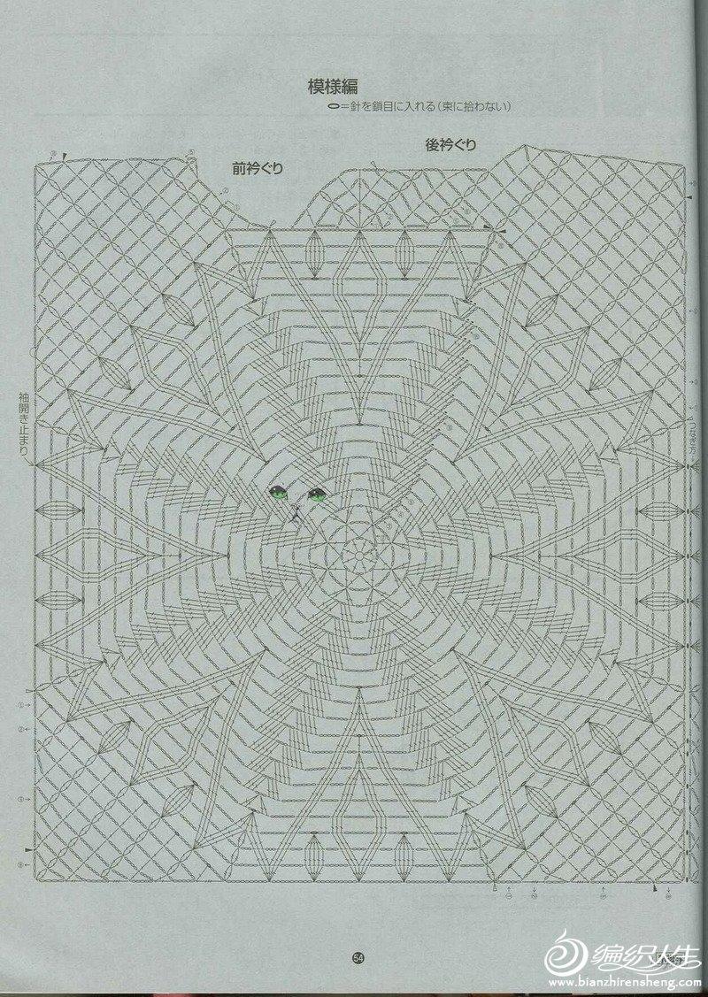 背心叶子花图解1.jpg