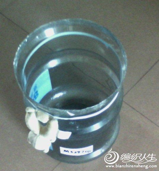 DSC_0002188.jpg