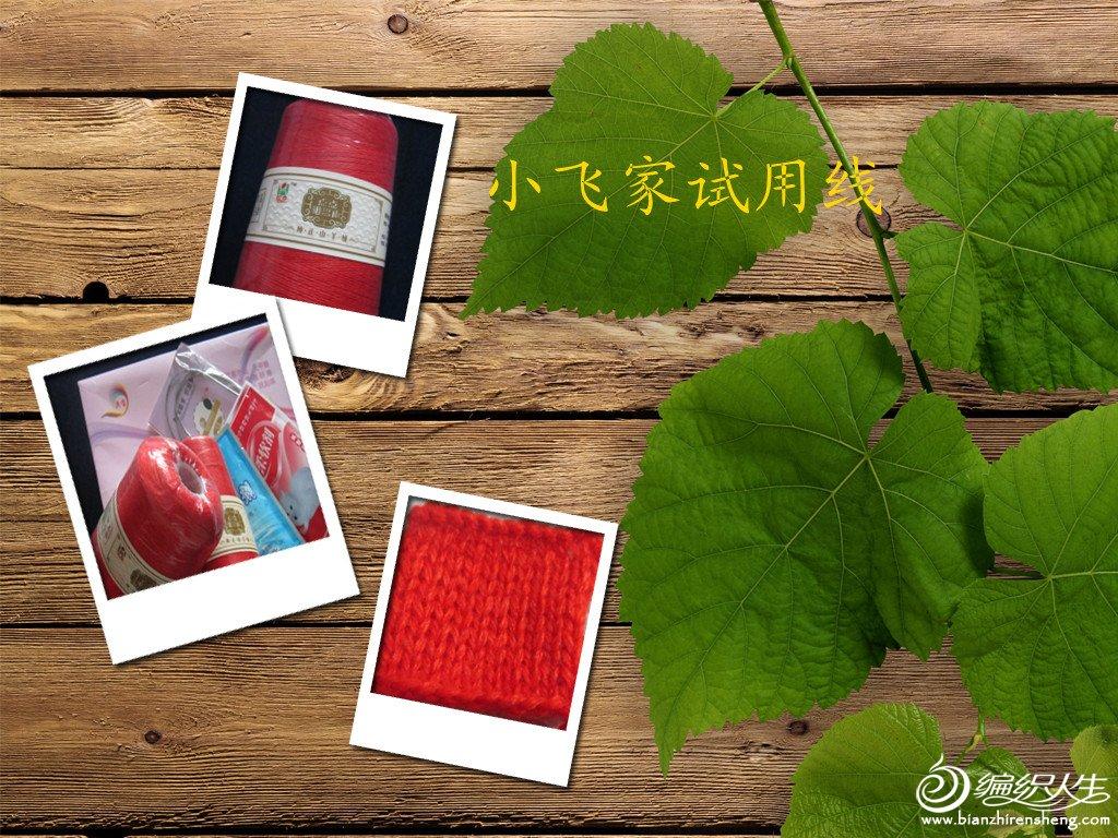 照片 426_副本.jpg