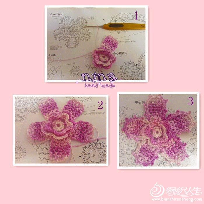 蔷薇花.jpg