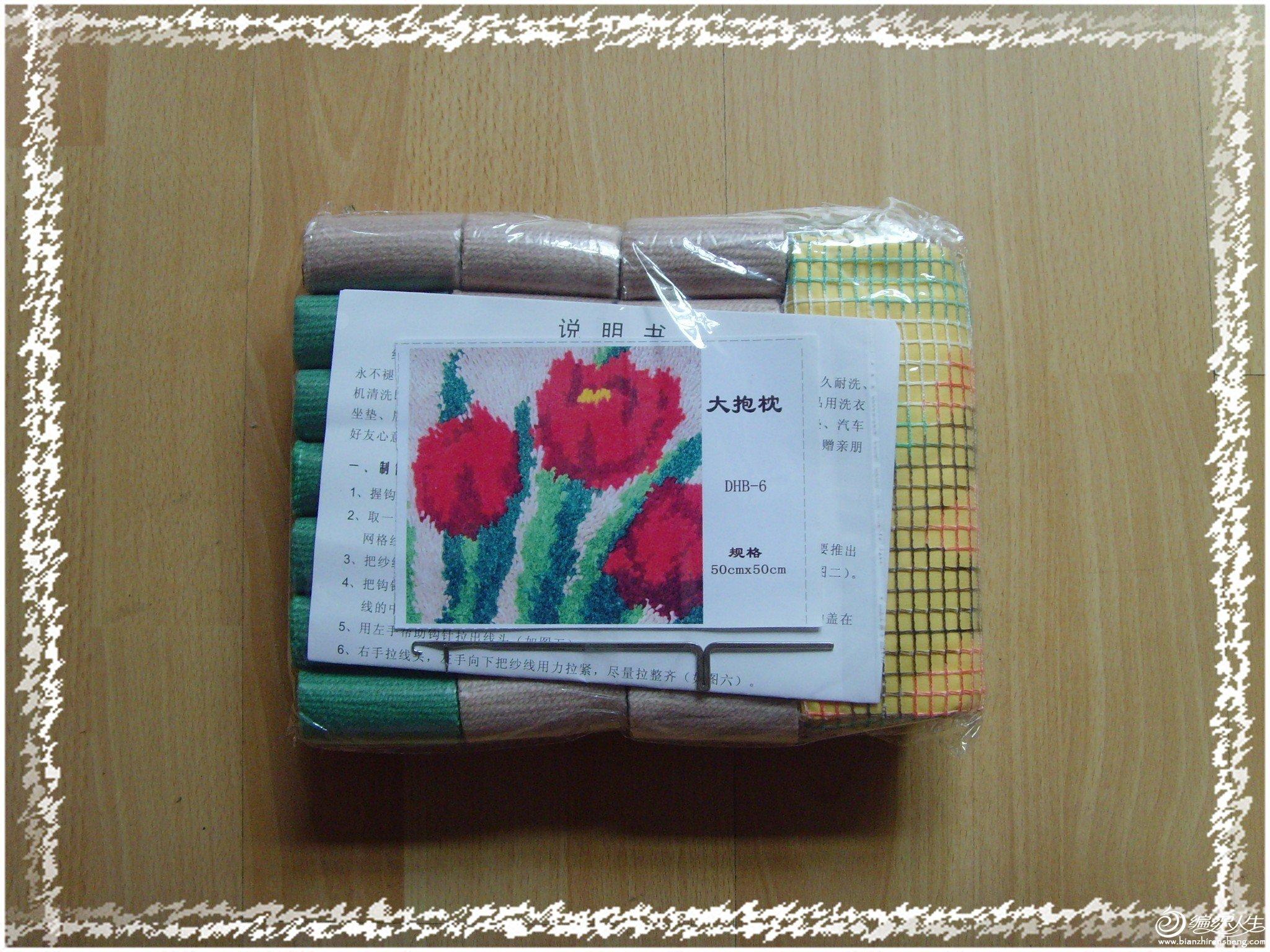 SNV32517_conew1.jpg