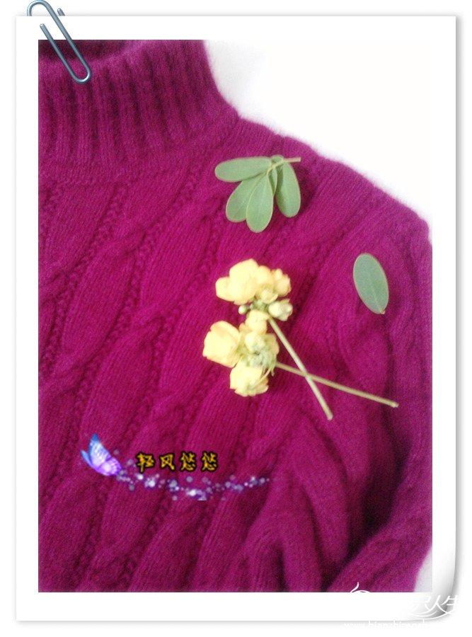 P1041_11-09-12_副本.jpg