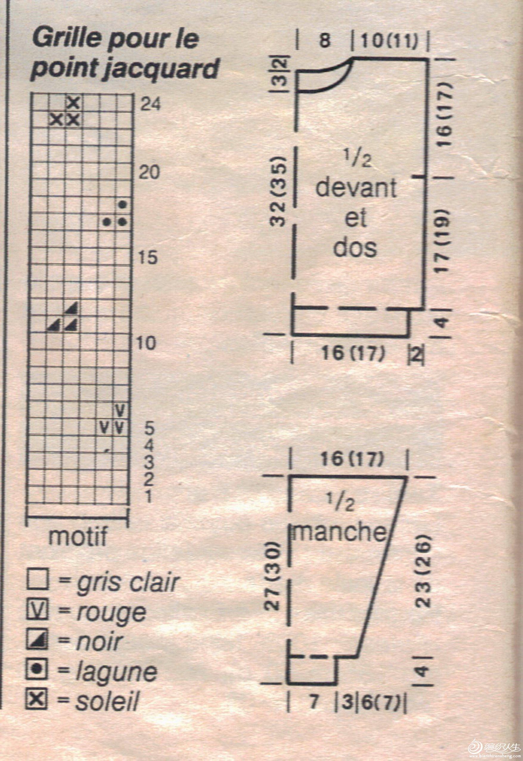鹦鹉图2.jpg