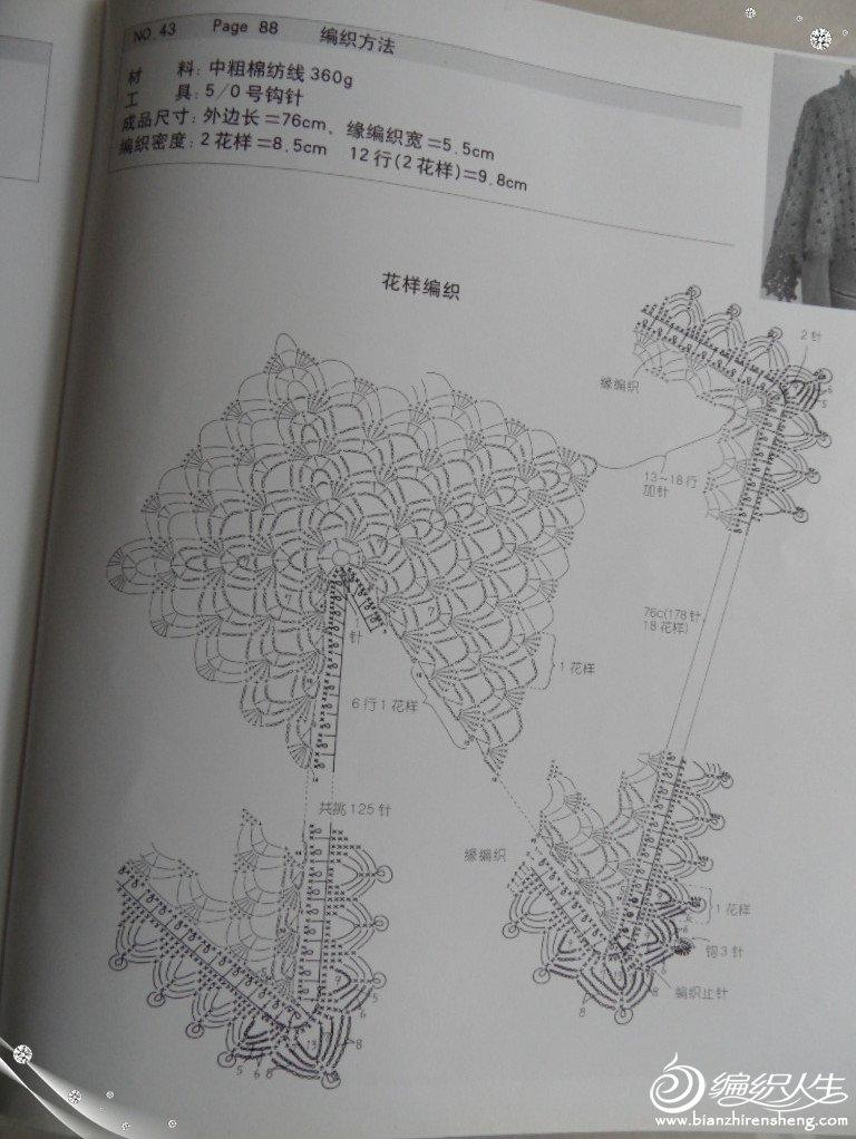 SAM_2291_副本.jpg