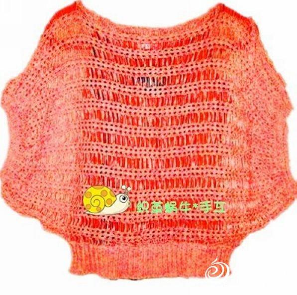 织茧蜗牛2.jpg