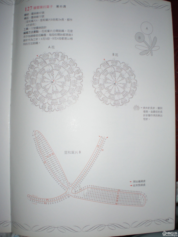 P8311342.JPG