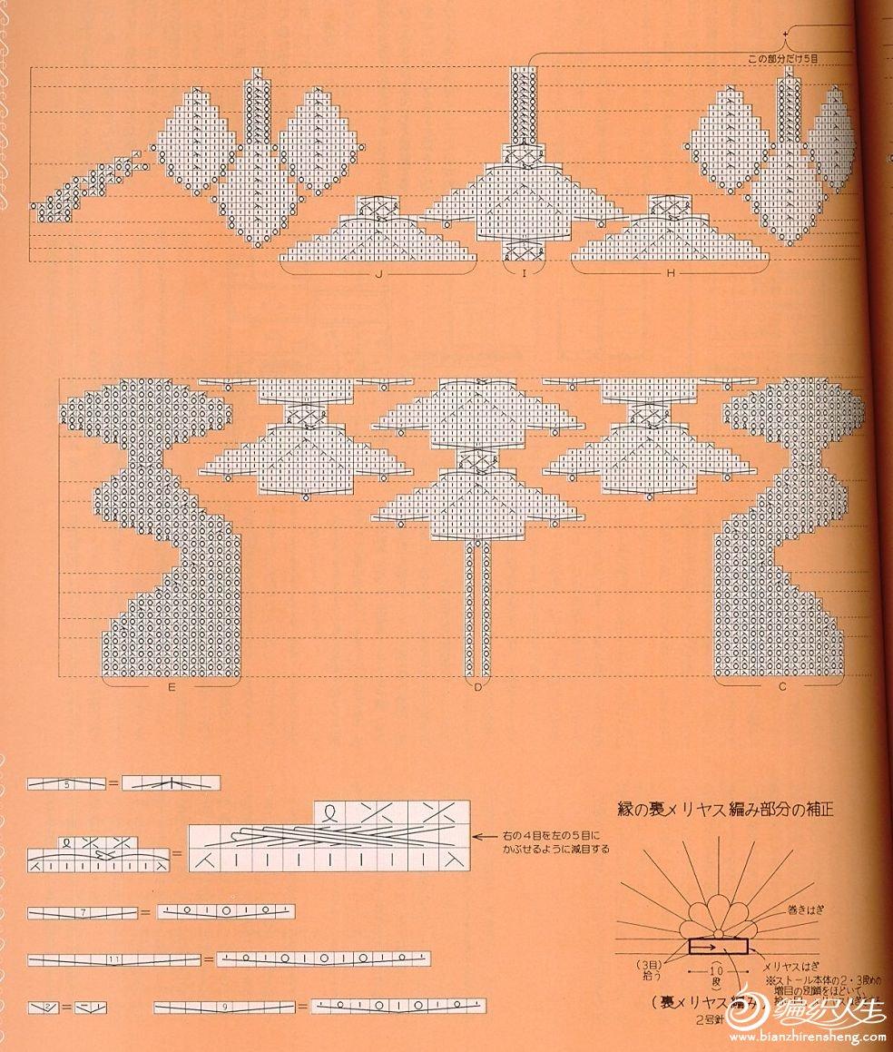 九枝花原图解4.jpg