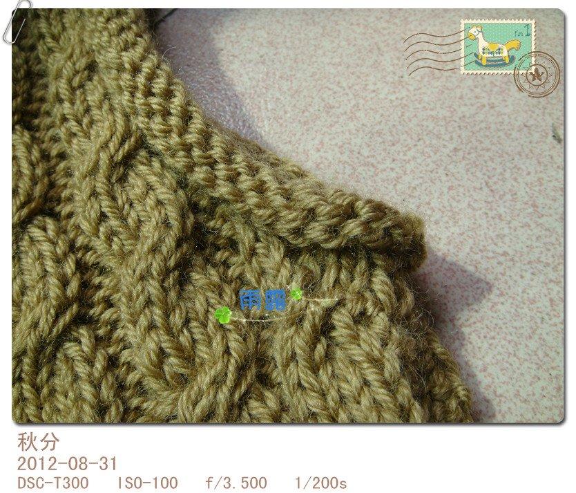 DSC06599_副本.jpg