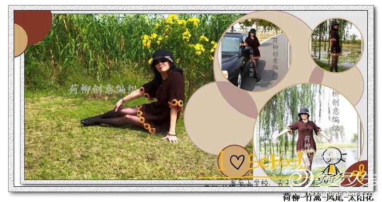 荷柳-太阳花.jpg