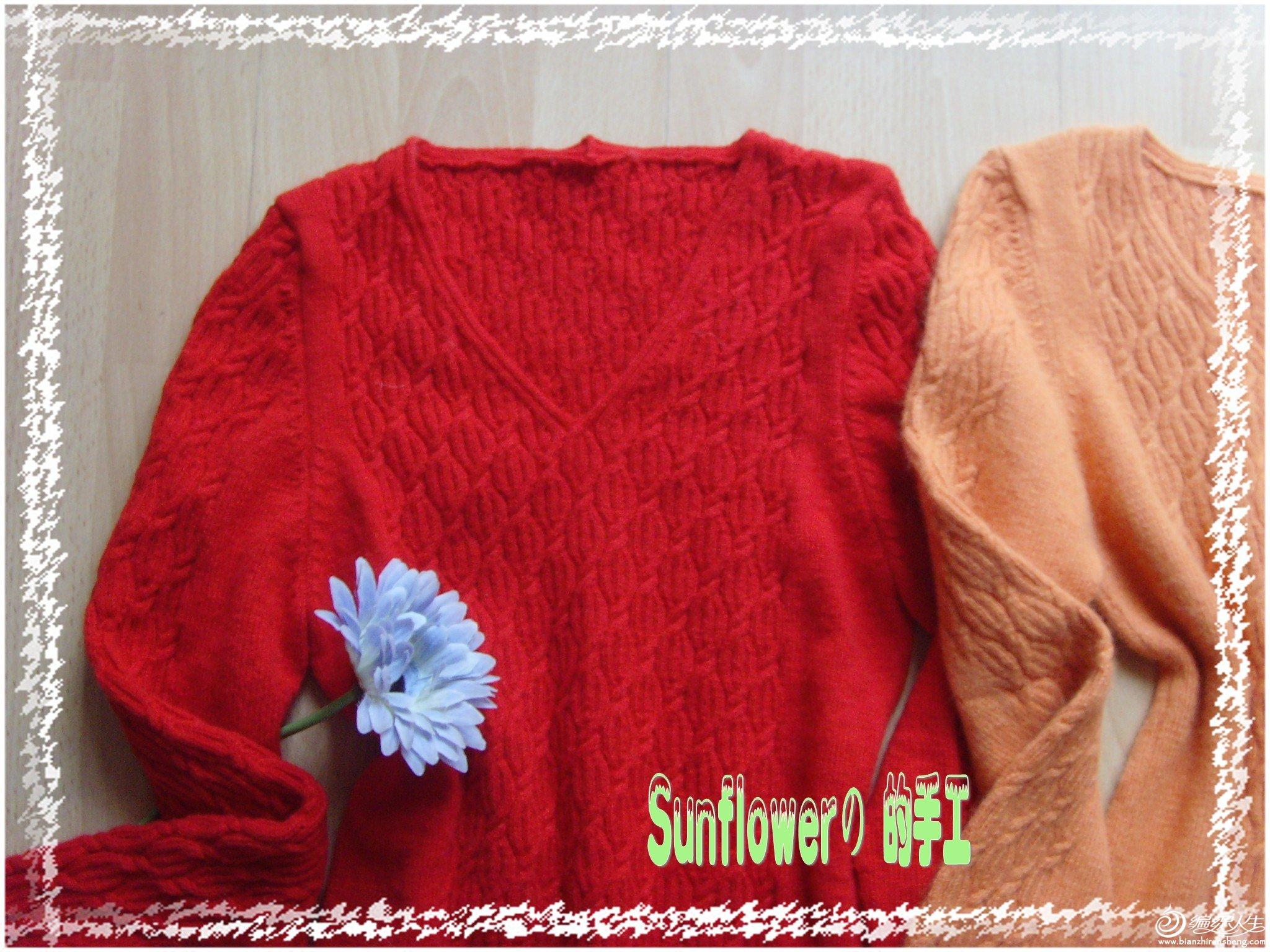 SNV32809_conew1.jpg