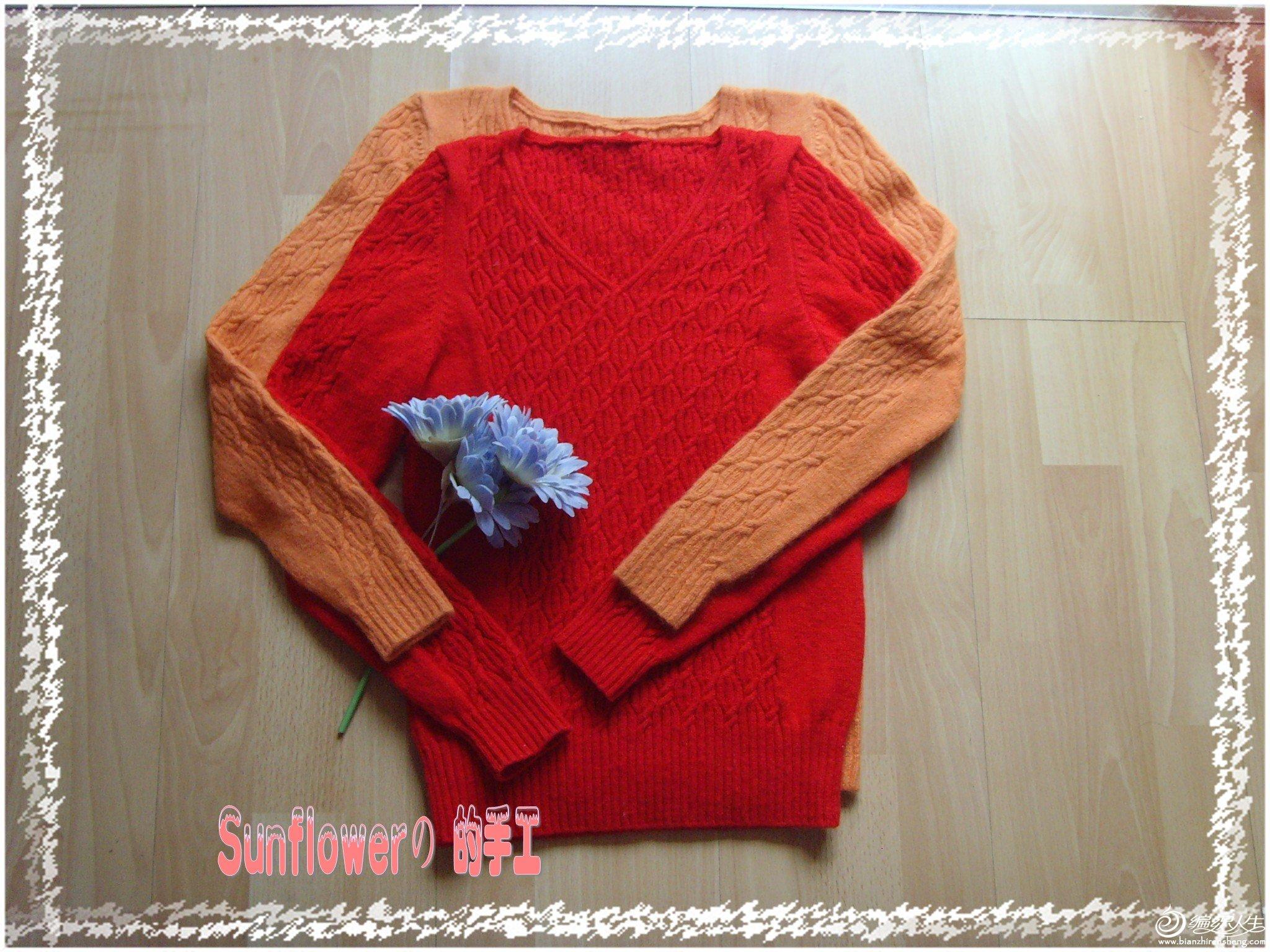 SNV32797_conew1.JPG