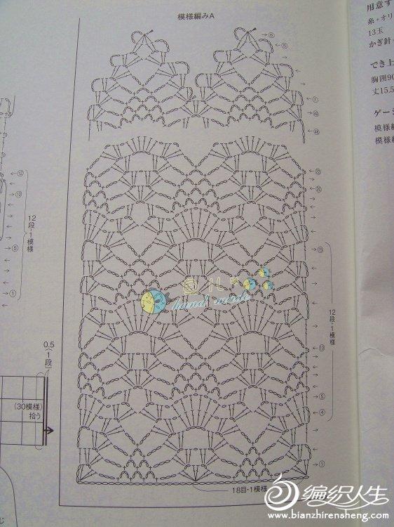 菠萝裙113.jpg