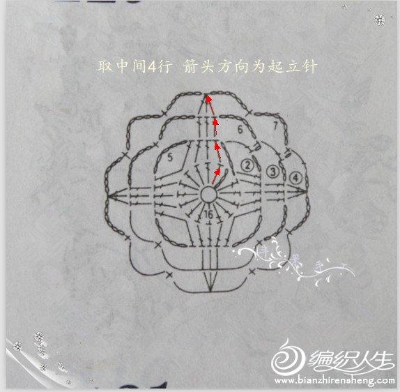 QQ截图20121011122239_副本.jpg