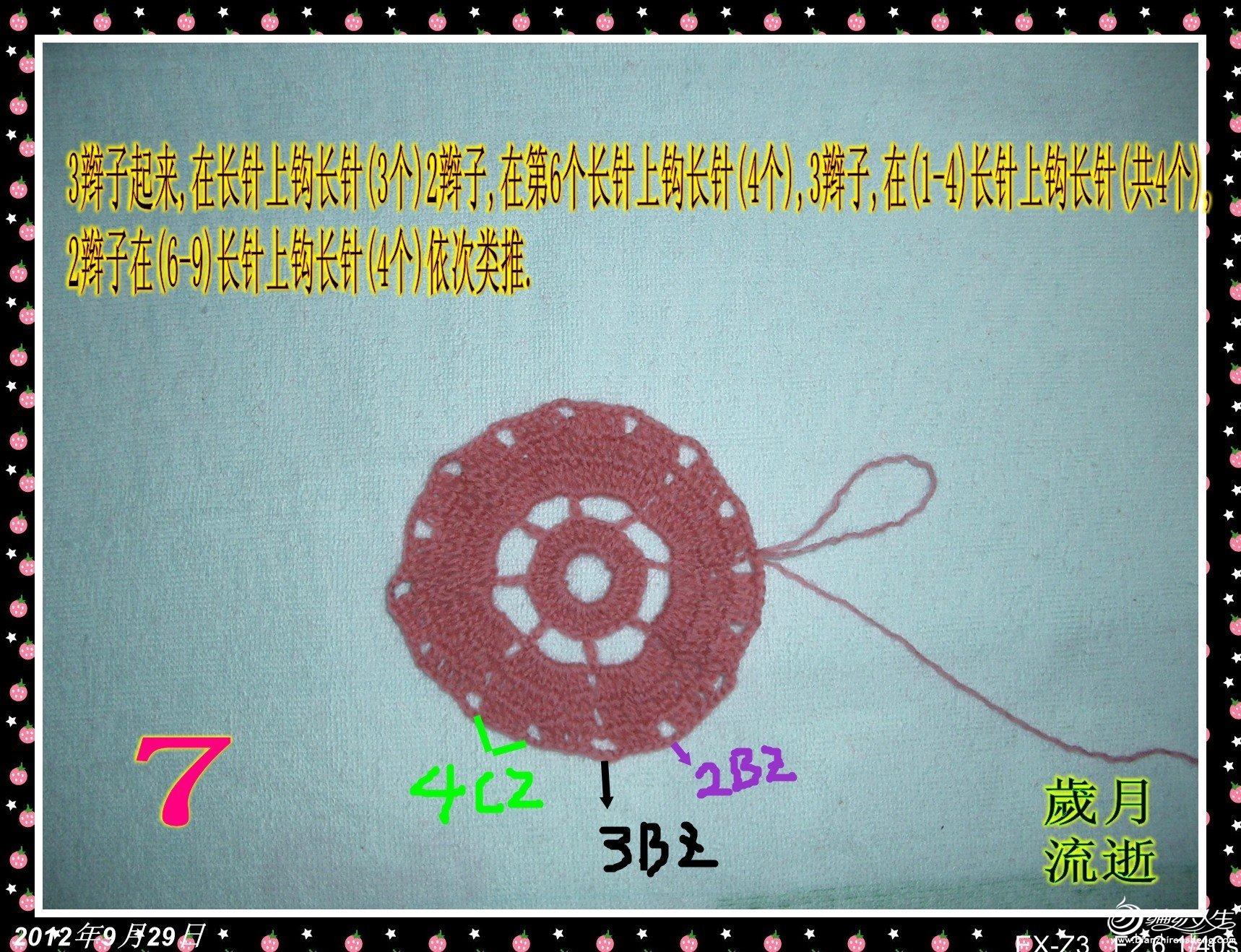 CIMG6281_conew3.jpg