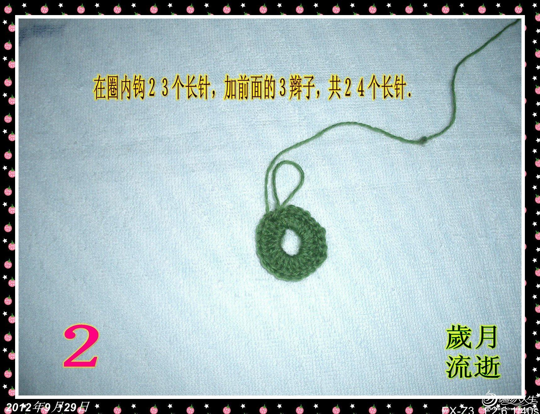 CIMG6319_conew2.jpg