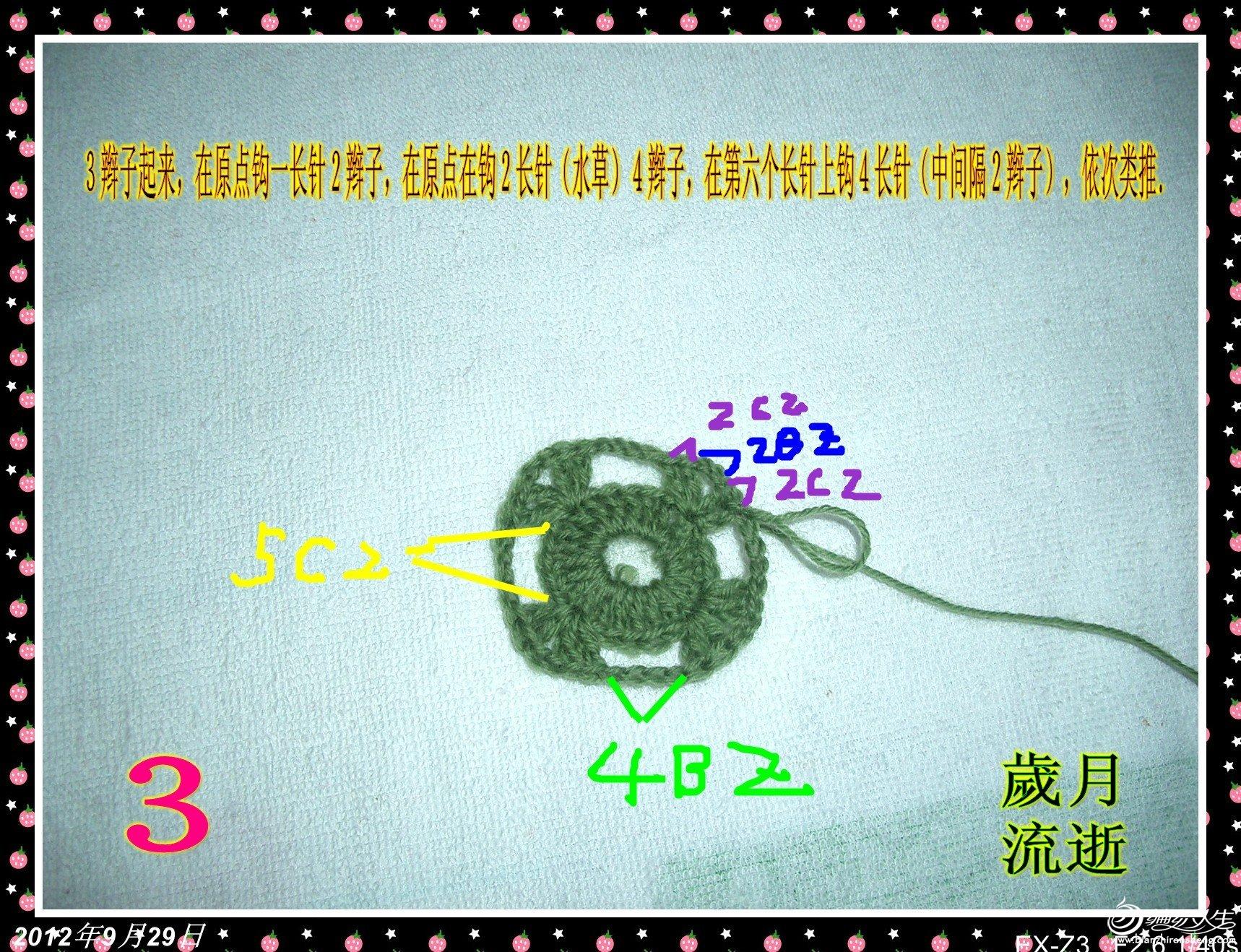 CIMG6306_conew2.jpg