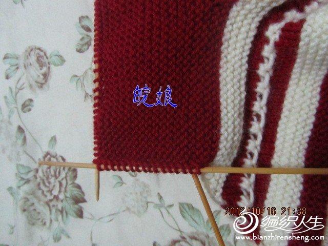 IMG_0039 (9)_conew1.jpg