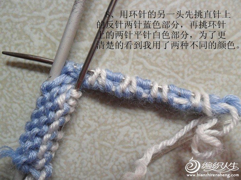 SAM_2467_副本.jpg