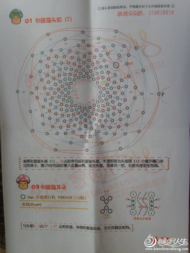 和服猫 (3).JPG