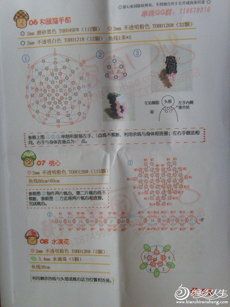 和服猫 (5).JPG