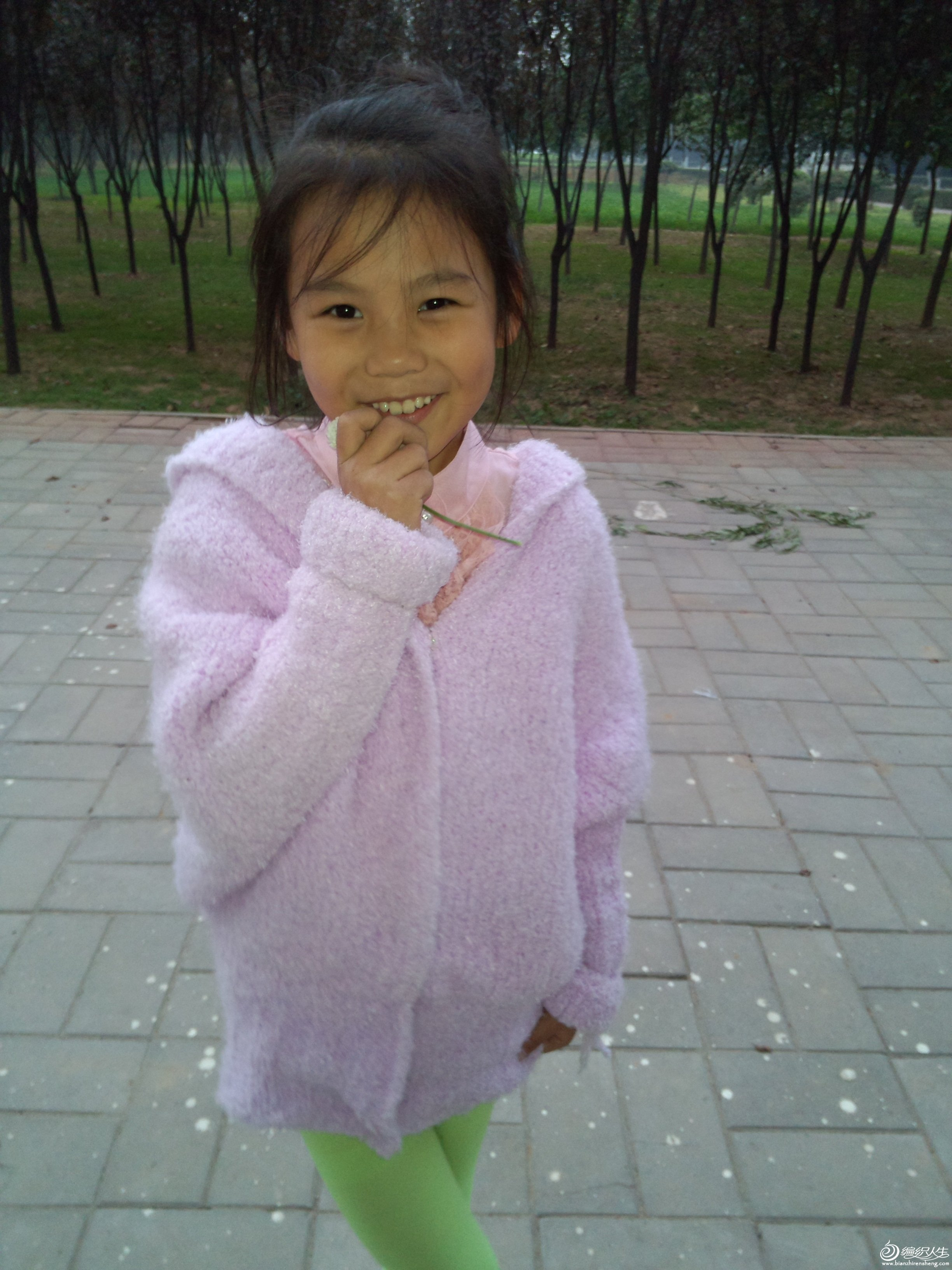 IMG_20121028_165301 (2).jpg