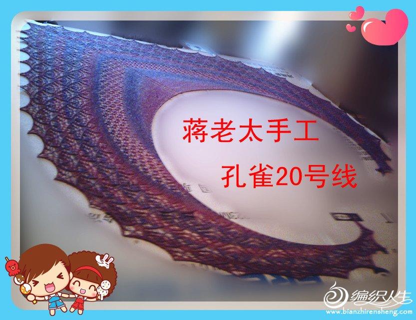 蒋老太孔雀20号线.jpg