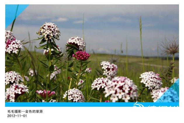1207162322fabca05810ae7f2d_副本.jpg