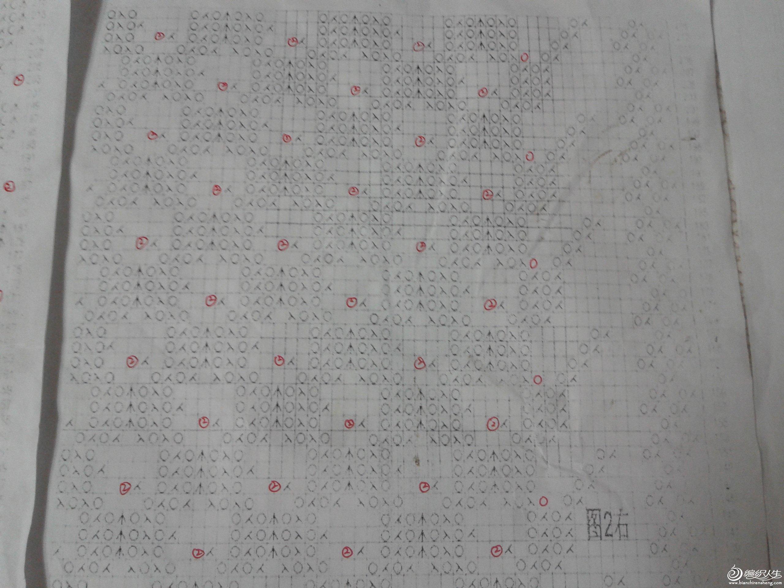 2012-11-05 19.51.43.jpg