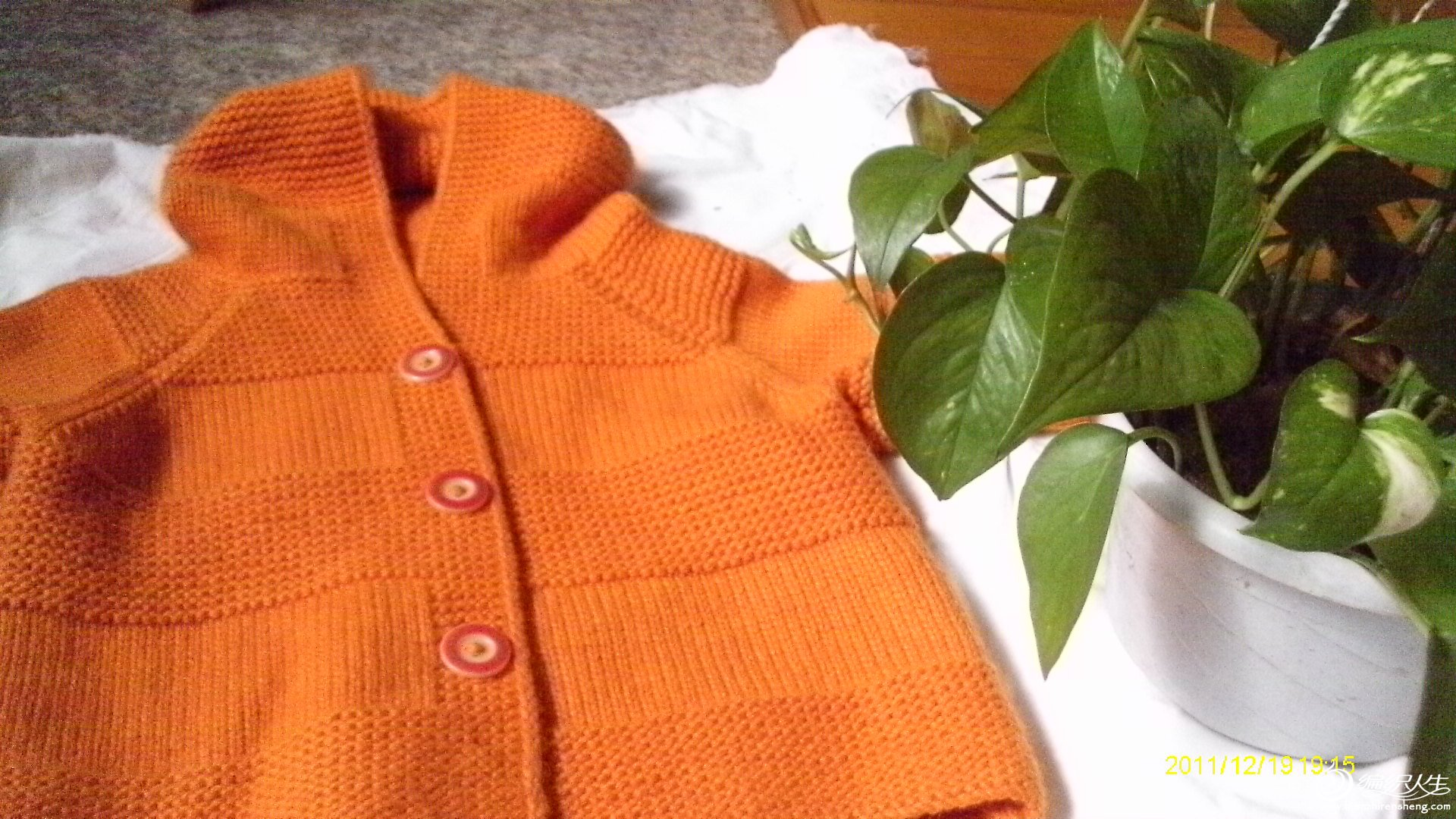 橘色连帽衣