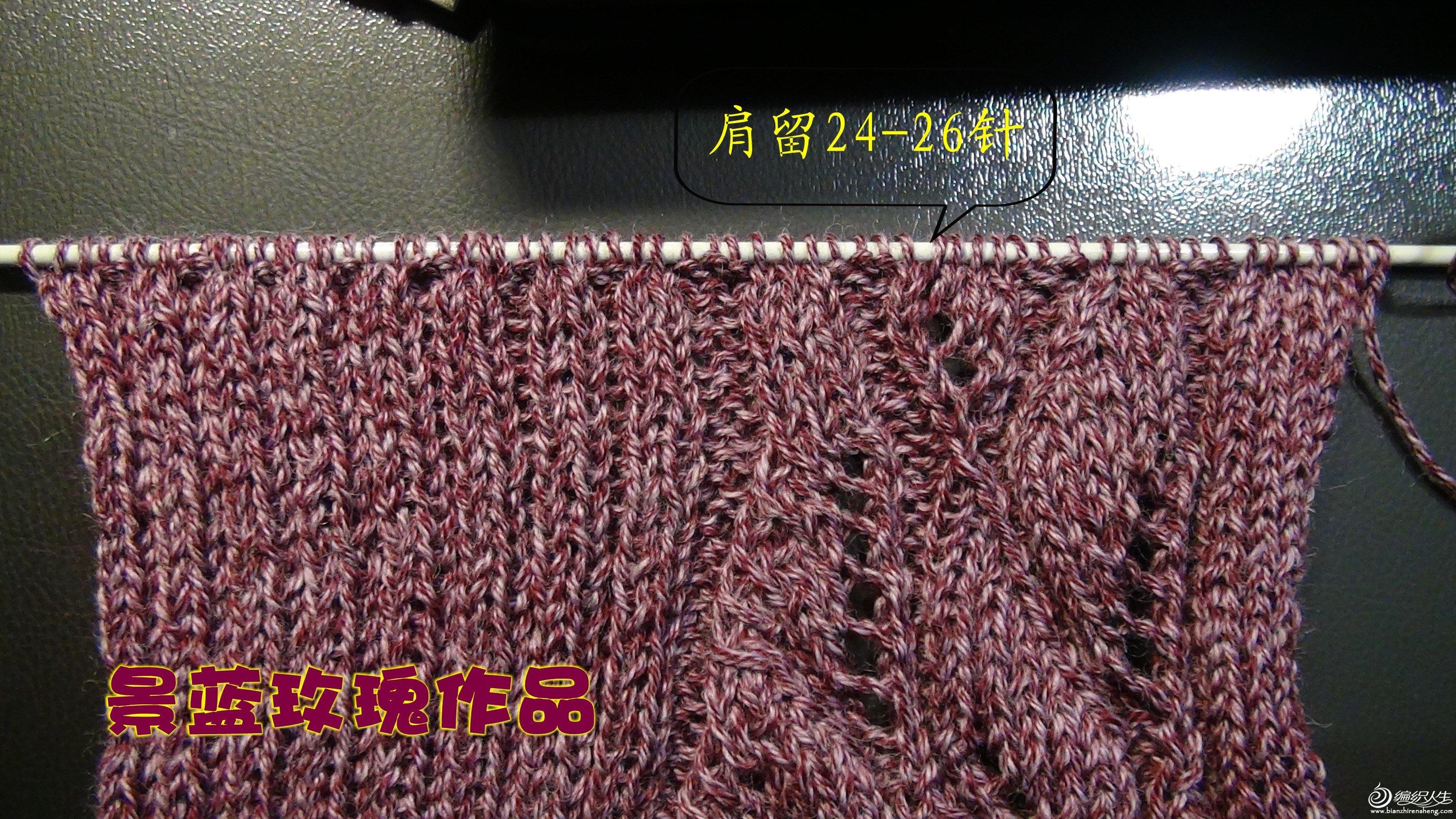 DSC01733_conew1.jpg