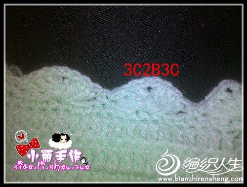 20D0E9~1_副本.jpg